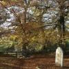 Gate from churchyard