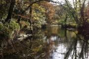 River Tamar