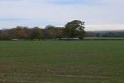 Farmland near Bodelwyddan Castle Estate