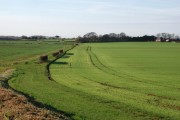 Nortofts Hill, Withernwick