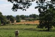 Farmland near South Clarewood