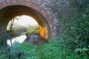 Bridge over Clyst