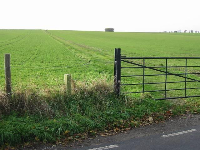 Farm track across the North Downs near Adisham