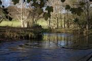 River Bray