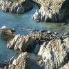 Shipwreck near Porth y Rhaw