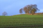 Kip Hill