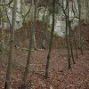 Disused quarry, Birdlip Hill