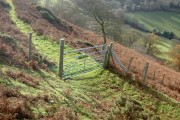 Gate on Bridleway.