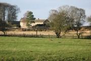 Farmland near Cheviot Farm