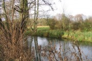 River Test from Budds Lane, Romsey