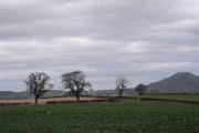 Farmland at Golding looking towards the Wrekin.