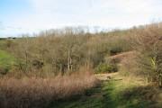Overlooking Jermains Wood