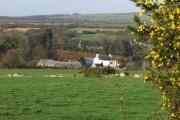 Upper Wern Farm