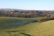 Farmland west of Larpool Lane