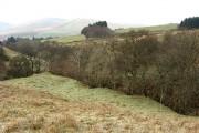 Farmland to the east of Arkleton
