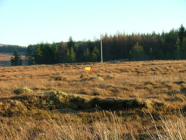 Balloons on the Moorland