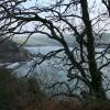 Holbeton: towards Meadowsfoot Beach