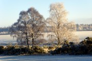 Near Glachbeg, on a frosty morning.