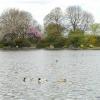 Alvaston Park, Derby