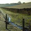 Stream and pasture, Carleton