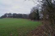 Field side off Watchley Lane