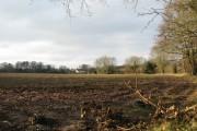 Field beside Marshgate