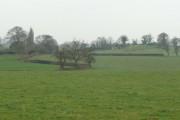 View over fields north of Vennington