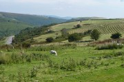 The top of the Darran Valley from Pentwyn, Fochriw