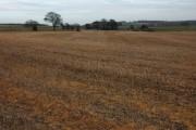 Farmland around Hartley Farm