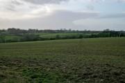 Farmland east of Eastwell