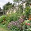 Herbaceous Border, Dewstow Gardens