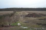 Field & hedge looking towards Boarpit Rough
