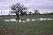 I see its been raining again!