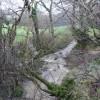 Flooded stream at Bilsford