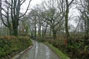 Lane to Winslade at Higher Twitchen