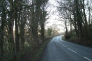 Nearly through Pentre Woods