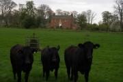 Lawton House c.1755