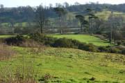 Farmland and copse, Avon Dassett