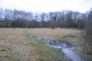 Waterlogged field by Canley Ford