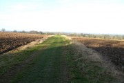 Amport  - Farmland