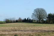 Farmland near Whittimere, Staffordshire