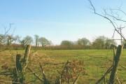 Farmland near Bodfel Hall