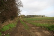 Farmtrack leading north