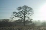 Jepsonclough Farm, Adlington - 20 acre field