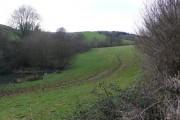 View to Alder Moor from Old Warren
