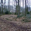 Valley Park - Iron Age Settlement