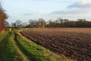 Farmland and track, Ashampstead
