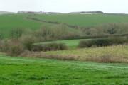 Farmland south of Tredruston Farm