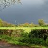 Green green grass of home.