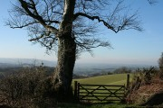 Ashton: Haldon Gate
